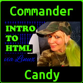 Learn HTML on Linux with Commander Candy